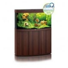 Juwel Vision 260 Aquarium & Cabinet Dark Wood